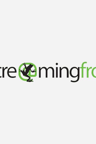 Screaming Frog Group Buy